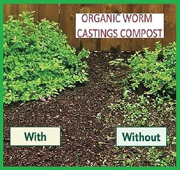 Original Organics - Compost de lombriz, 100 % ecológico con partículas de vermiculita, fertilizante de suelo natural, bolsa de 40 l.: Amazon.es: Jardín