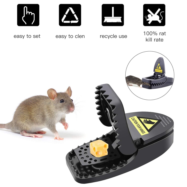 Charlemain Piège à Souris, Tapetteà Souris Réutilisable, Souricière avec Ressort Puissant,Tapette à Rat et Sensible Contrôle des Rats Efficace (Lot de 6)