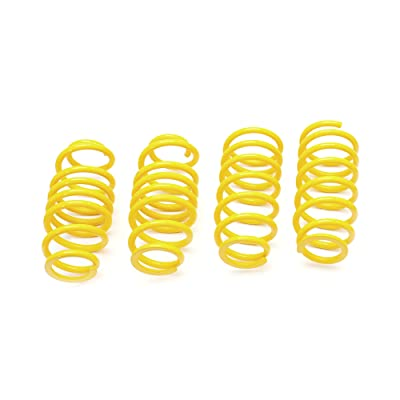 ST 28220289 Lowering Spring: Automotive