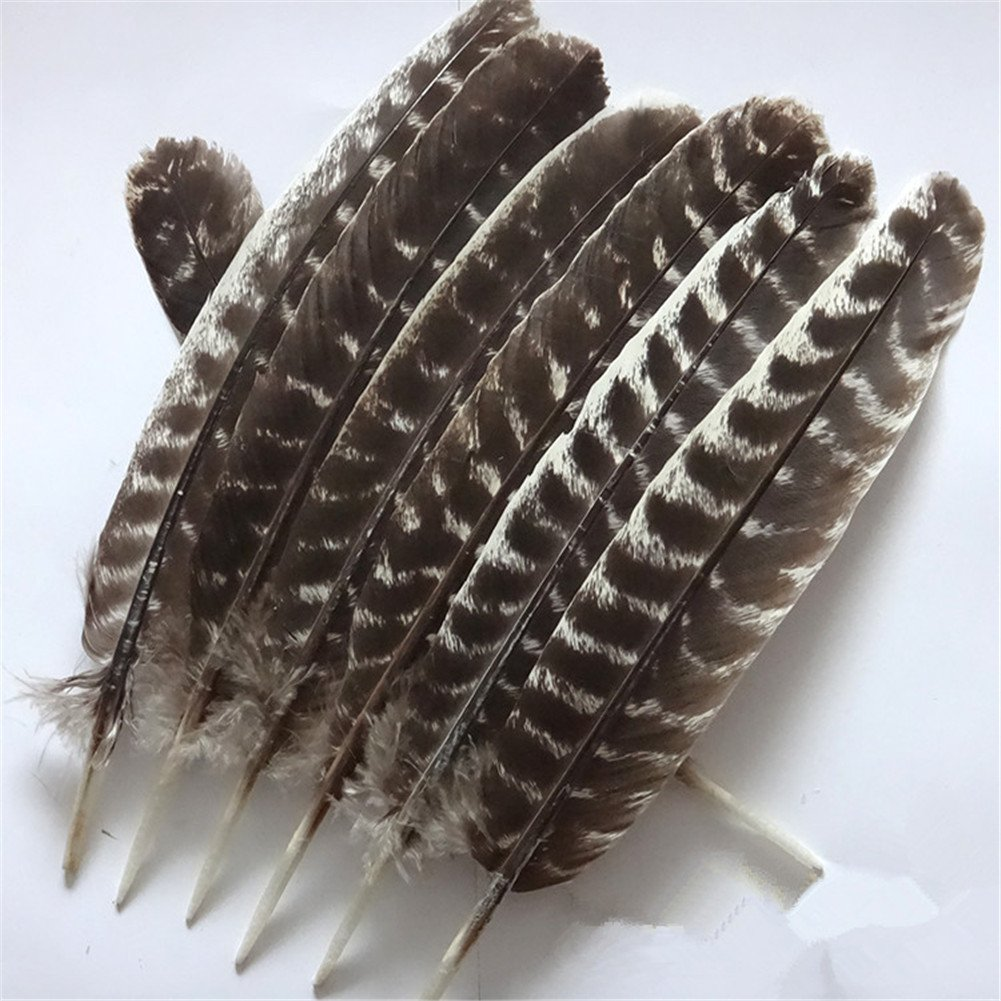 WAKEACE Turkey Feathers 10 Pieces/PCS Discount Wholesale Discount Wholesale DIY Decoration Collection Purification Energy Feathers