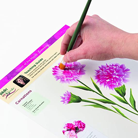 TWO DVD FLORAL BOUQUETS PAINT KIT,13- BRUSH DONNA DEWBERRY 8 tbs ACRYLICS,