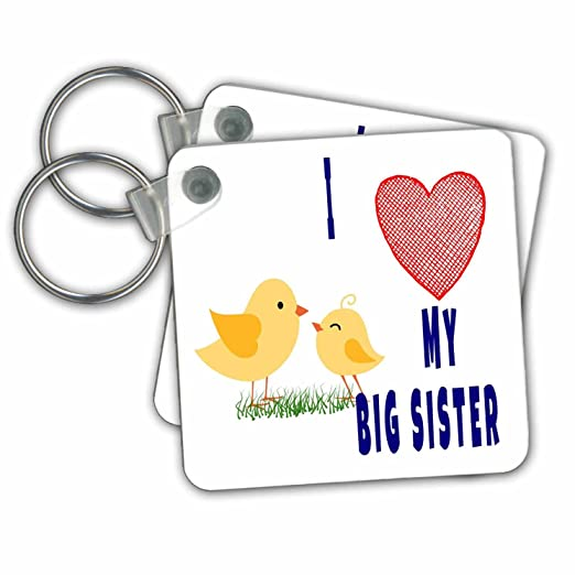 Amazon RinaPiro Sisters Quotes I Love My Big Sister Unique I Love My Sister Picture Quotes