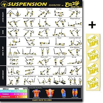 Suspension Strap Workout Routines Blog Dandk