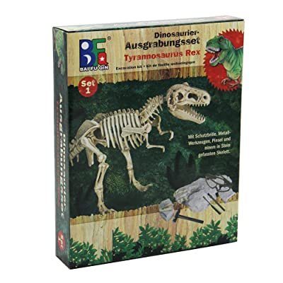 winemana Dinosaur Science Kit Dinosaur Fossil Digging Kit for Kids (A): Toys & Games