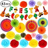 Taco Theme Decor for Wedding Colorful Paper Fans JELDA International Mexican Party Decorations Fiesta Party Supplies | Serape Table Runner Cinco De Mayo Birthday Coco etc