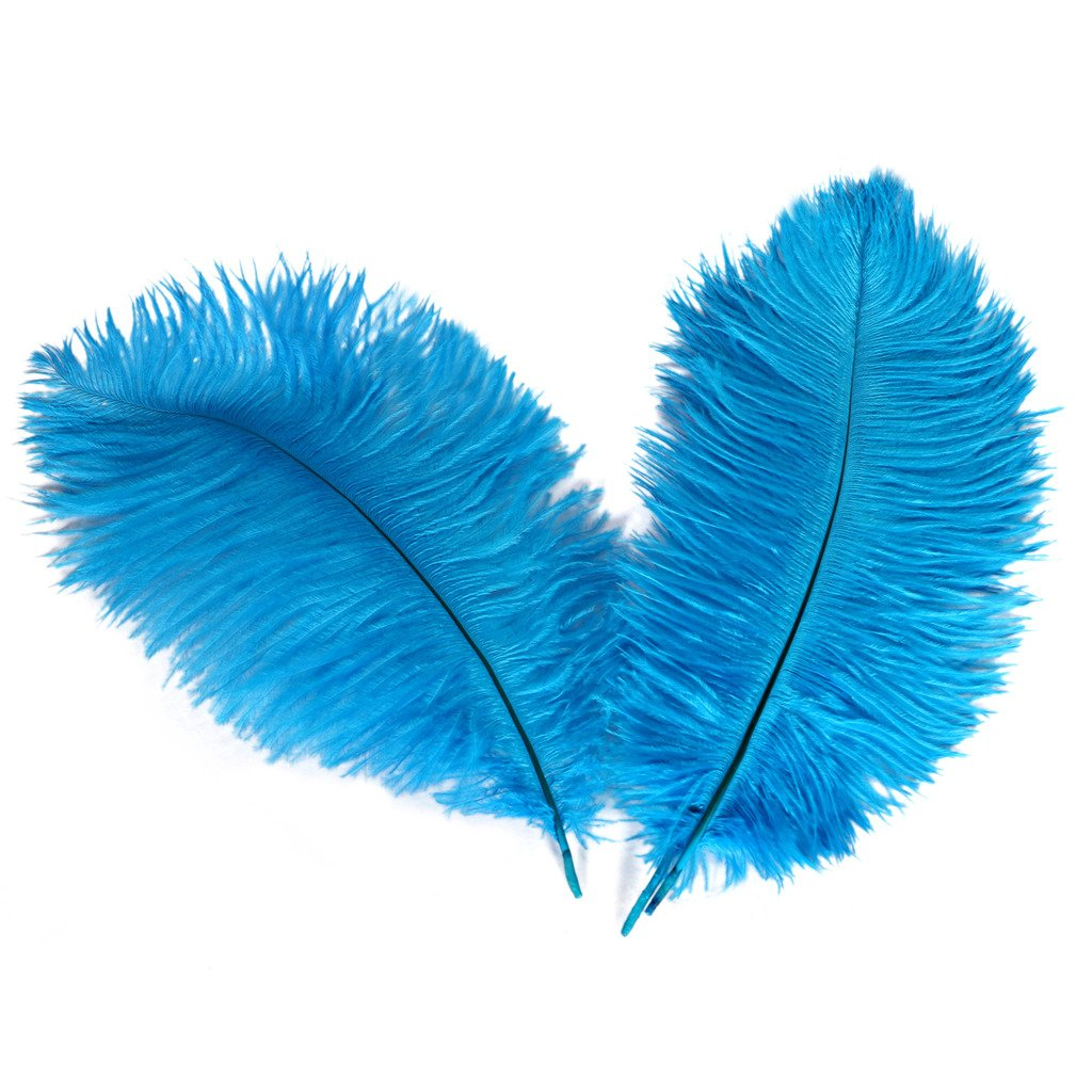 Plume for Wedding Centerpieces Home Decoration 25-30 Wionya 20pcs Ostrich Feather Craft 10-12inch