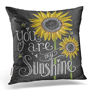 Emvency Decorative Throw Pillow Cover Square Size 18x18 Inches You are My Sunshine Sunflowers Chalk Painting Decor Pillowcase with Hidden Zipper Cushion Covers…