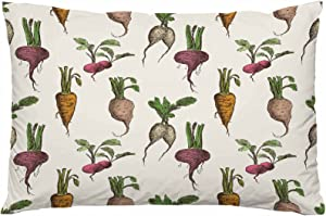 WONDERTIFY Ripe Roots Throw Pillow Case Different Growth Carrots Vegetables Food Cushion Covers for Decorative Bedroom/Living Room/Sofa/Farm House 20×30 Inch
