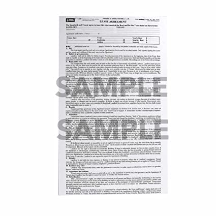 image about Free Printable Blumberg Lease identify Blumberg Refreshing York Rent Type 186 for Residences within 2-5 Loved ones House, One Sheet, 48 for each Bundle