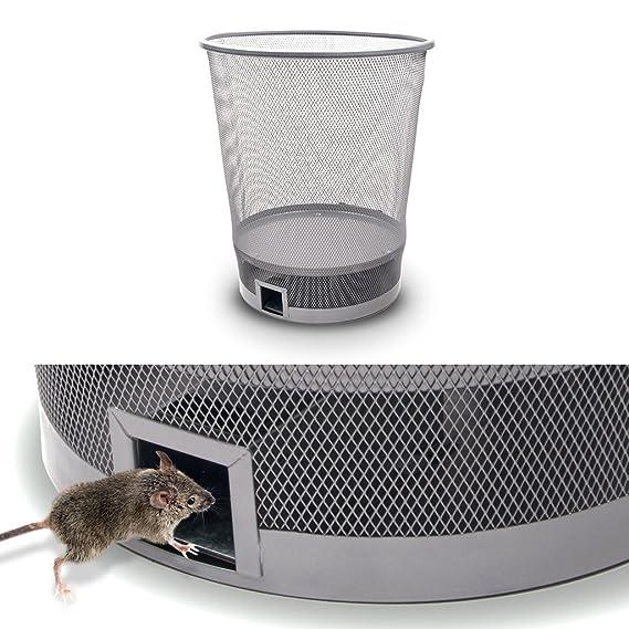 Gardigo Papelera & Jaula trampa para roedores, ratón y ratas ...