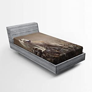 Ambesonne Animal Fitted Sheet, White Wolf on Rocks at The Night Hazy Misty Weather Wildlife Nature Scenery Print, Bed Cover with All-Round Elastic Deep Pocket for Comfort, Twin XL Size, Brown Beige