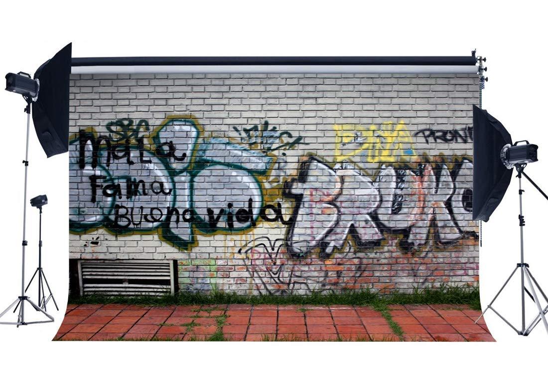 内祝い レンガ シャビー 文化 アメリカンストリート 背景幕 80年代 ヒップホップ 音楽 ロック ビニール 9x6フィート 背景幕 グラフィティ Gladbuy 壁紙 B07llhgq Eb163用 小道具 スタジオ 写真 コンサートパーティー 90年代 グランジ写真背景 バックペーパー背景布