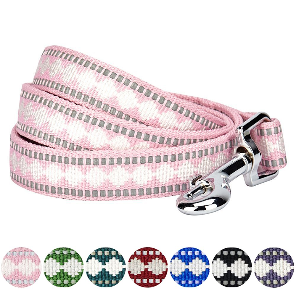 Blueberry Pet 7 Colors 3M Reflective Jacquard Dog Leash with Soft & Comfortable Handle, 5 ft x 3/4, Pink, Medium, Leashes for Dogs