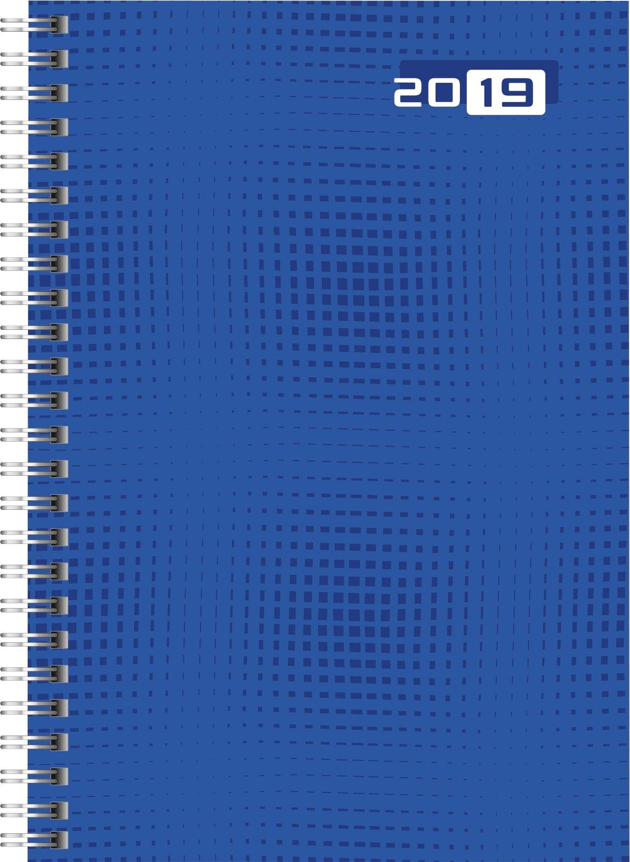 Rido/idé 702100702 Buchkalender futura 2 (2 Seiten =1 Woche, 148 x 208 mm, Grafik-Einband, Kalendarium 2019, Wire-O-Bindung) blau