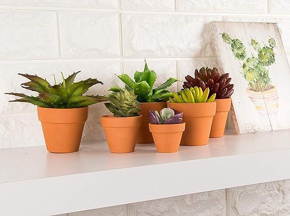 SORA Pot dargile de Fleur Miniature /écologique pour la Maison de poup/ée Mini Pot de Fleur de d/écoration de Maison de poup/ée Durable Minuscule