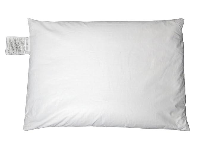 Zen Chi Organic Buckwheat Pillow