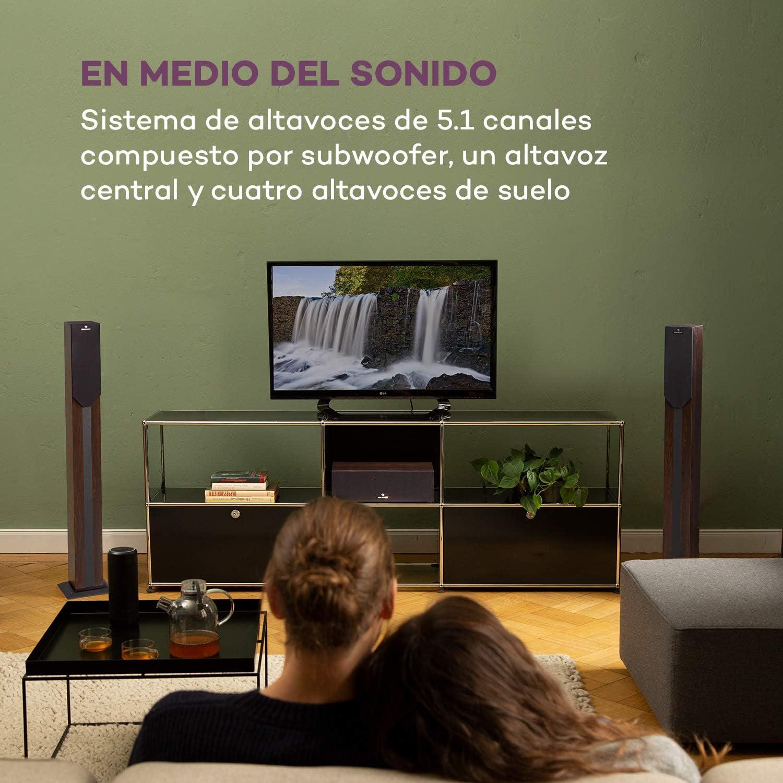 AUX Mando a Distancia 5 Altavoces sat/élite auna Areal Elegance Pantalla LED Sistema Home Cinema 5.1 Puerto USB//SD Subwoofer 5 Marr/ón Potencia 190 W Est/ética Madera 3+5 Bluetooth