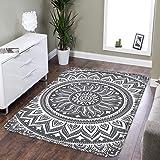 LEEVAN Area Rug Modern No-Shedding Non-Slip Machine Washable Rectangle Living Room Bedroom Study Soft Carpet Floor Mat…