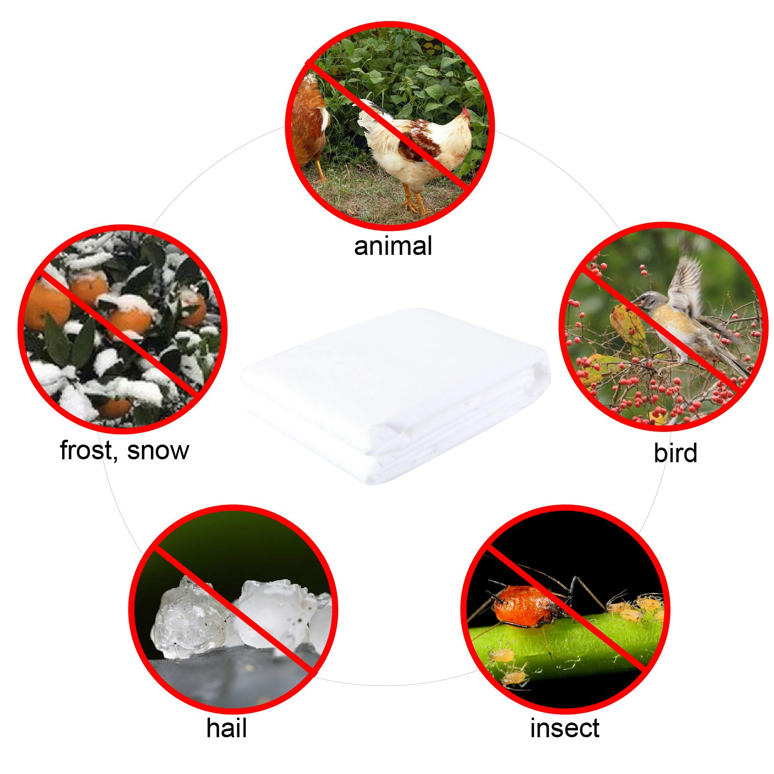 PHI VILLA Frost Blanket Plant Cover Floating Row Cover, 1.5 oz, 10'x100' by PHI VILLA (Image #3)