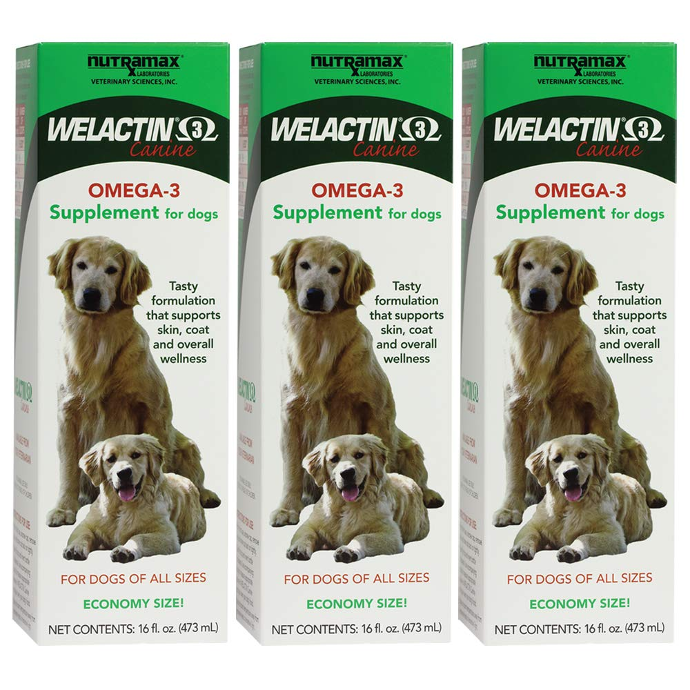 Nutramax Welactin Omega -3 Nutritional Supplement for dogs, 480 ML Liquid, 3-pack by Nutramax Laboratories