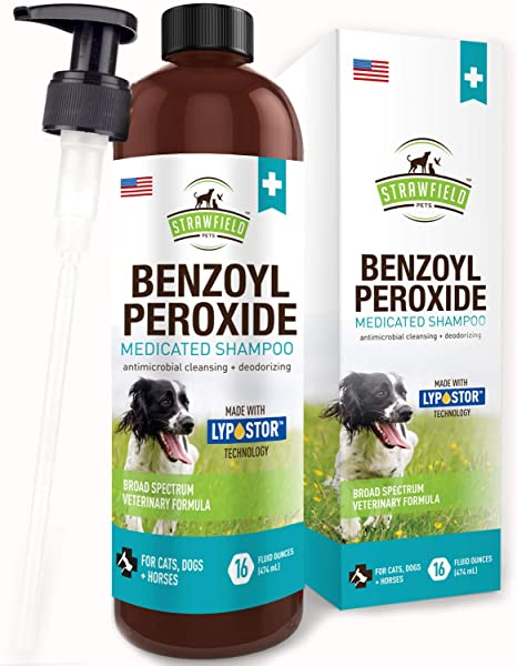 Benzoyl Peroxide Shampoo For Dogs Cats Sulfur 16 Oz Medicated Dog Shampoo For Smelly Dogs Anti Itch Dry Skin Allergy Treatment Folliculitis
