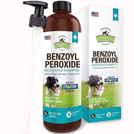 Amazon.com: Champú de peróxido Benzoyl para perros gatos + ...
