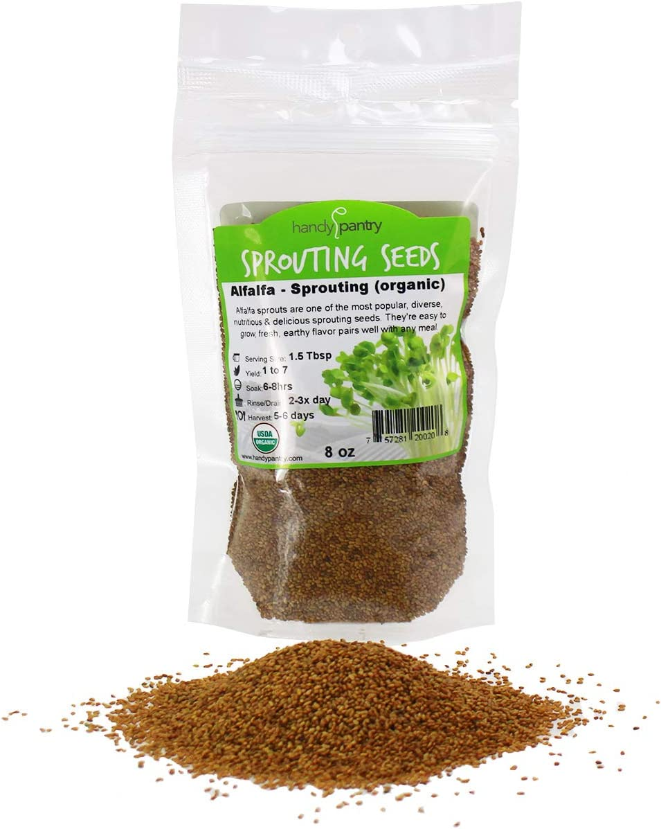 Certified Organic Alfalfa Sprouting Seed- 8 Oz - Handy Pantry Brand - High Sprout Germination- Edible Seeds, Gardening, Hydroponics, Growing Salad Sprouts, Planting, Food Storage & More