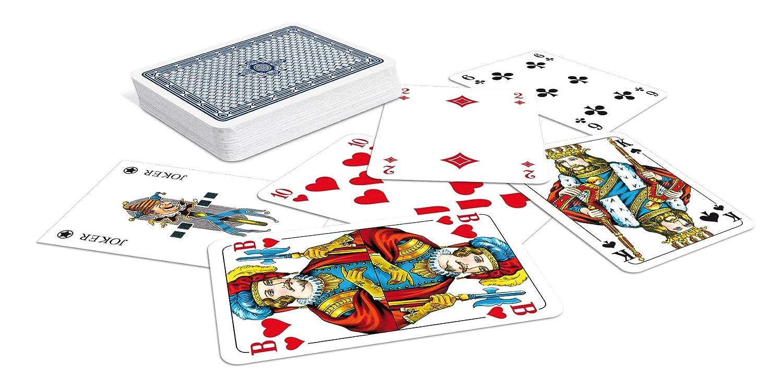 Franz/ösisches Bild Poker plastiketui