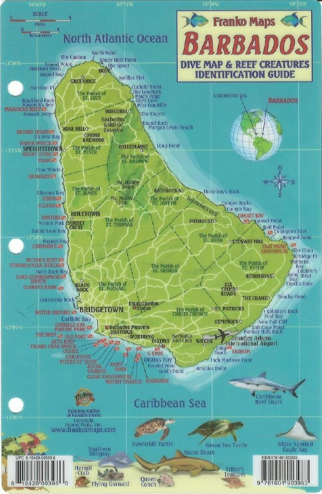 Barbados Dive Map Reef Creatures Guide Franko Maps Laminated - Amazon maps
