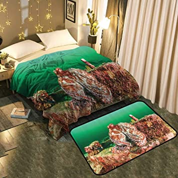 Tremendous Amazon Com Tablecovershome Fluffy Plush Blanket And Theyellowbook Wood Chair Design Ideas Theyellowbookinfo