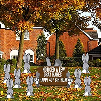 VictoryStore Yard Sign Outdoor Lawn Decorations Birthday Decoration Noticed A Few Gray Hares