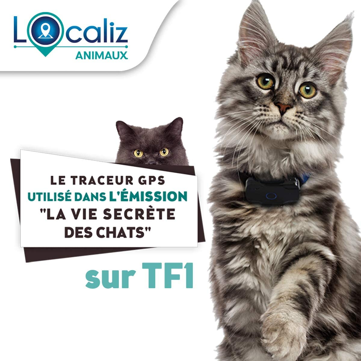 Localiza Le Lookat de Lookat - Rastreador GPS para gato y perro pequeño