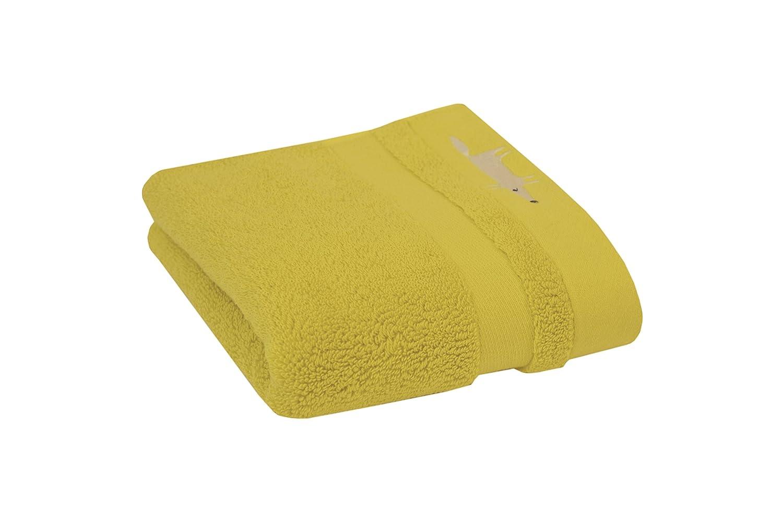 Fox Solid Washcloth-Forest Scion 2658 Mr 13 x 13