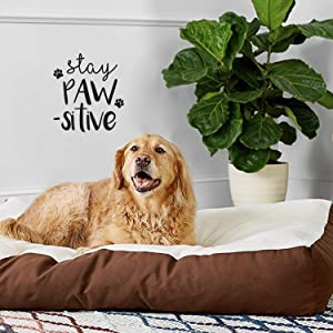 """Vinyl Wall Art Decal - Stay Pawsitive - 12"""" x 10"""" - Cute Trendy Doggy Paw Fun Decor Home Apartment Bedroom Living Room - Cool Dog Lovers Work Office Business Indoor Outdoor Modern Inspirational Decal"""