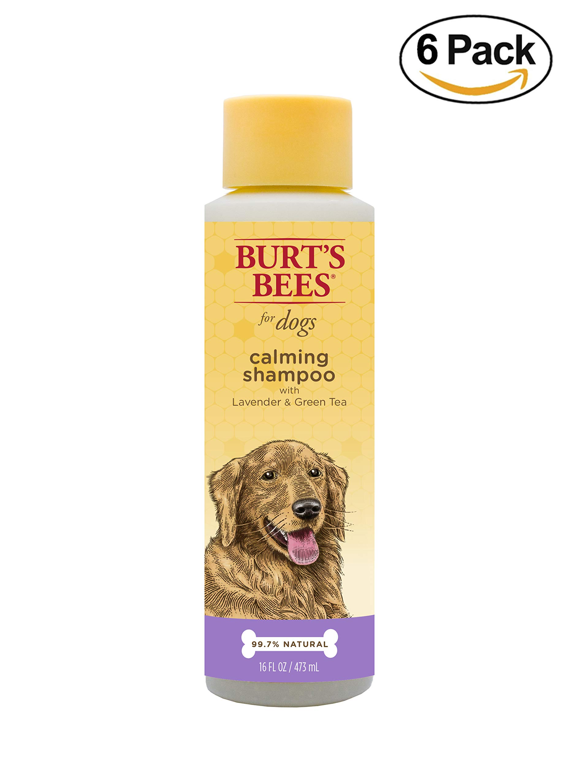 Burt's Bees All Natural Calming Shampoo for Dogs | Soothes, Calms & Revitalizes | Made with Lavender and Green Tea, 16 Ounces - 6 Pack