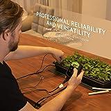 "VIVOSUN 10""x20.75"" Seedling Heat Mat and Digital"