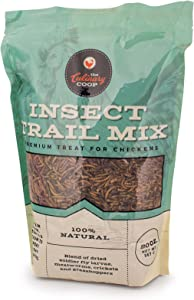 Fluker's Culinary Coop Chicken Treats - Dried Insect Trail Mix