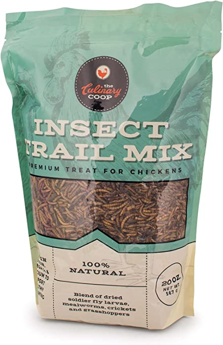 Updated 2021 – Top 10 Food For Insects