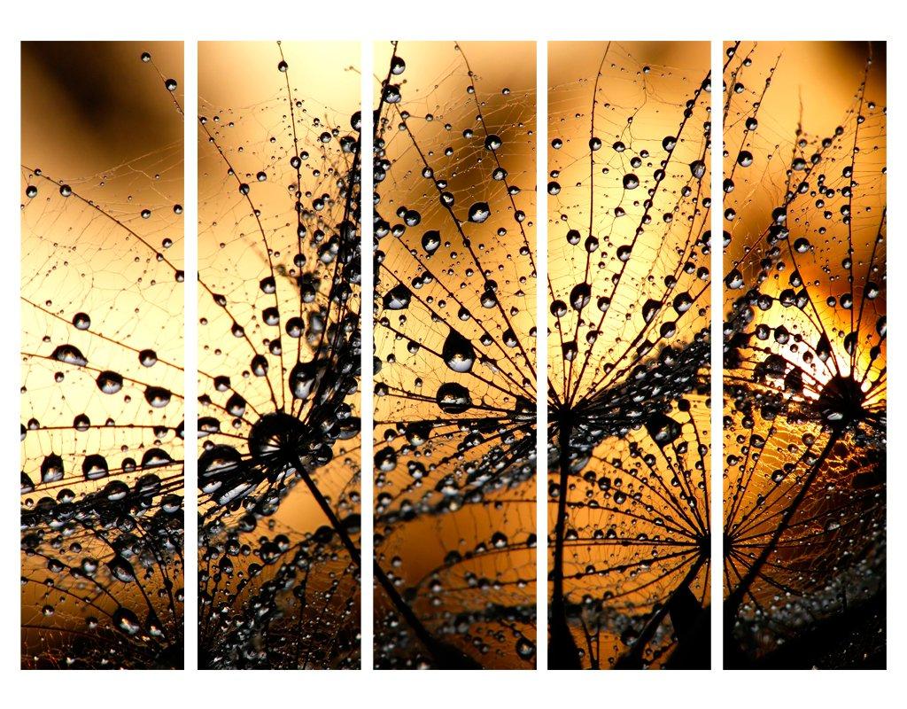 murando Raumteiler /& Pinnwand Foto Paravent Pusteblume 135x172 cm beidseitig auf Vlies-Leinwand bedruckt Trennwand Spanische Wand Sichtschutz Raumtrenner beige braun b-B-0125-z-b