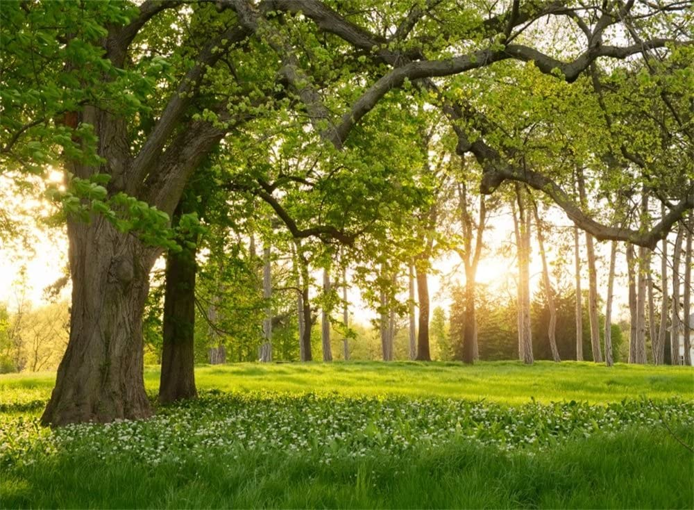 Leowefowa 7X5FT Spring Backdrop Rural Forest Trees Backdrops for Photography Blooming Flowers Green Grassland Nature Vinyl Photo Background Kids Adults Outdoor Travel Portraits Studio Props