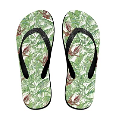 b4d4b8b587c61 Amazon.com  Unisex Summer Beach Slippers Fly Flip-Flop Flat Home Thong Sandal  Shoes  Clothing