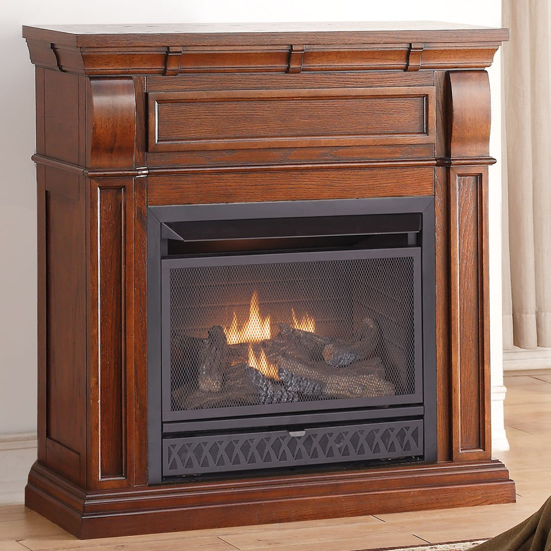 amazon com procom vent free dual fuel fireplace insert model