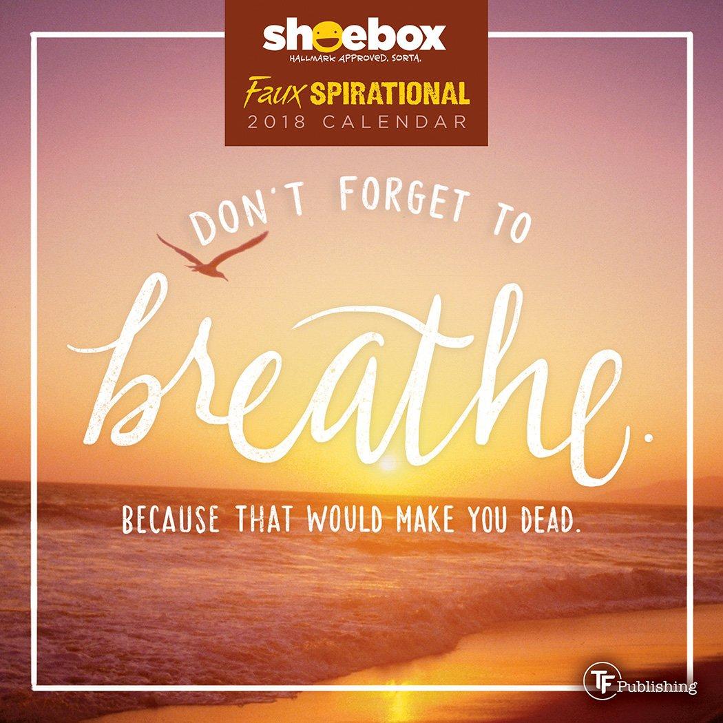 2018 Faux-Spirational by Shoebox Mini Calendar: Shoebox ...