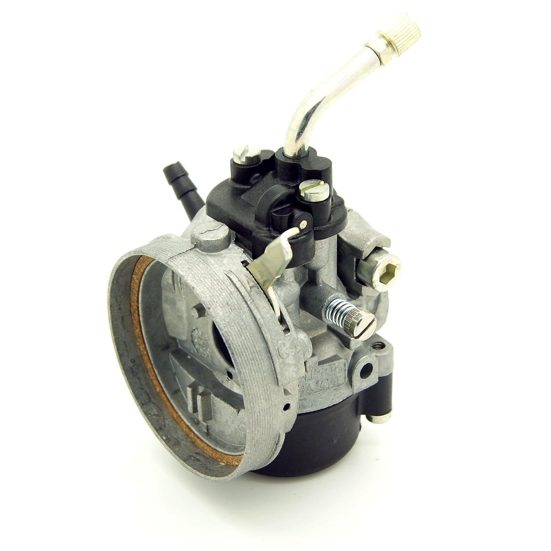 Carburador Dellorto 14 mm/SHA 14-14 L: Amazon.es: Coche y moto