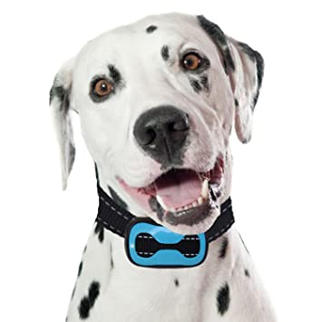 PetSol Intelligent Anti Bark Advanced Dog Stop Barking Collar, Reliably  Stops Dogs Barking Safely And