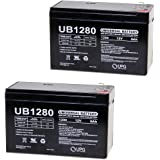Razor E200/E200S/E300 Battery Replacement Battery Reuse Existing Connectors - Includes two batteries! (upg)