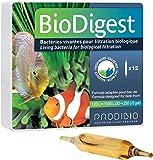Prodibio - Prodibio BioDigest - 12 ampoules