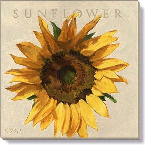 Sullivans Darren Gygi Flower Wall Art
