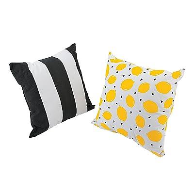 Fun Express Outdoor Lemon Pillow Set - Home Decor - 2 Pieces: Home & Kitchen