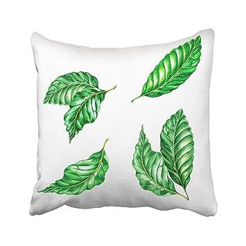 Amazon.com: Emvency - Funda de almohada decorativa, diseño ...